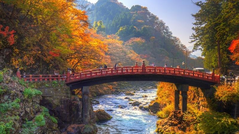 栃木県民・出身者に聞いた!栃木のおすすめのお土産ランキング