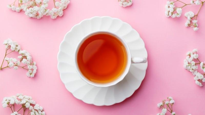 紅茶ペットボトルおすすめ10選|全国の紅茶好きに聞いた!無糖がナンバー1