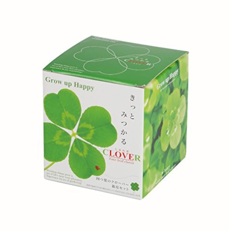 聖新陶芸,四つ葉のクローバー栽培セット,GD-592