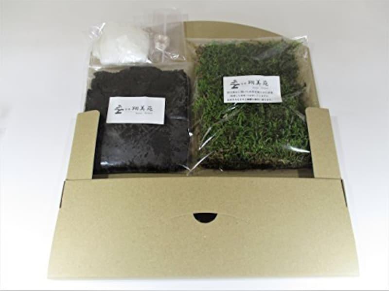 翔美苑 ,苔玉キット,-