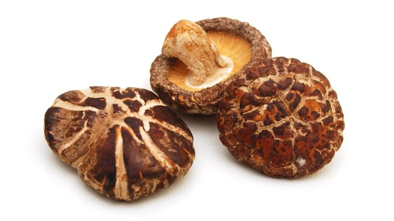 干し椎茸のおすすめ人気ランキング10選|凝縮された味わい深い旨味を!戻し方と戻し時間も解説