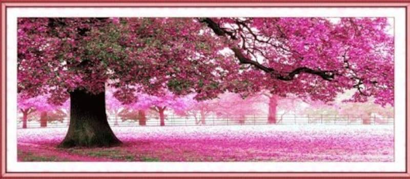 Pioneer Photo Albums Inc,クロスステッチ大樹桜満開風景刺繍キット