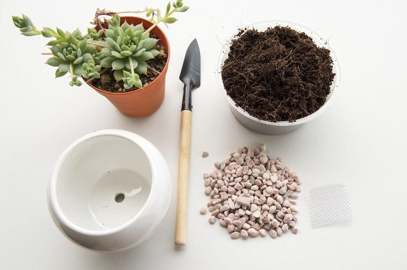 鉢底石のおすすめ人気ランキング10選|水はけ通気に効果てきめん!
