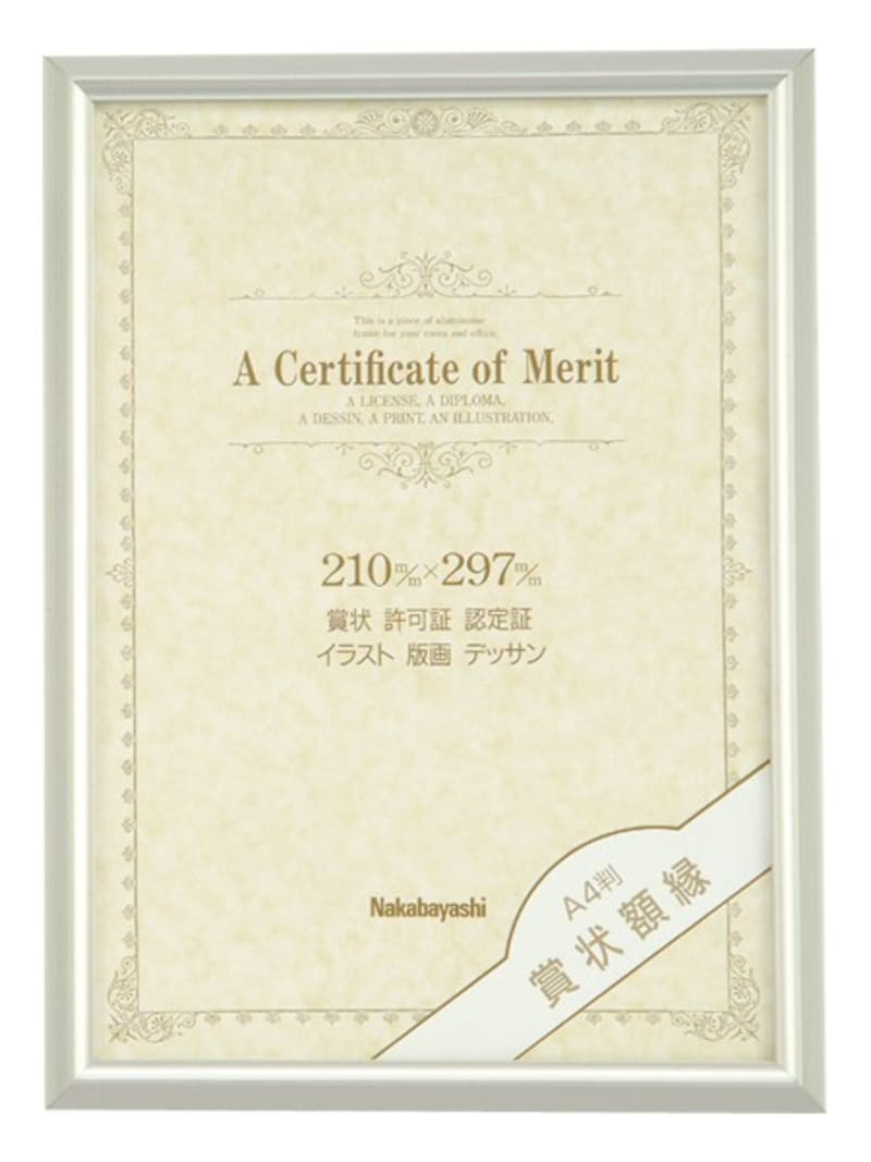 ナカバヤシ,アルミ賞状額 ,フ-KA-13-S