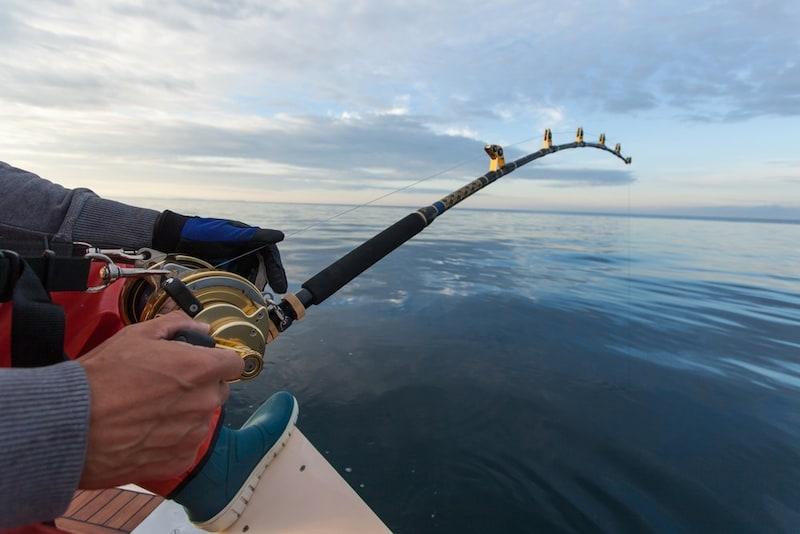 キャスティングロッドのおすすめ人気ランキング9選|対象魚の重量で決まる!
