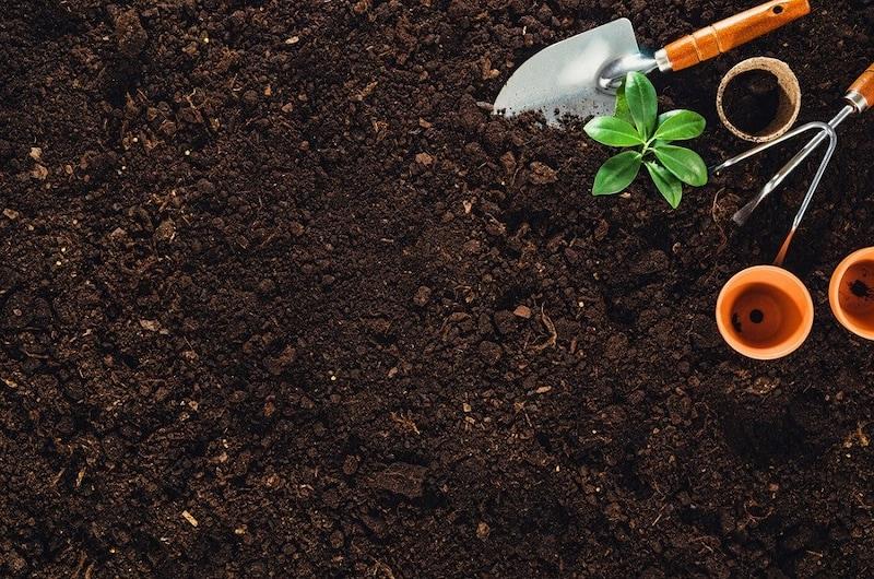 培養土のおすすめ人気ランキング8選|育てたい植物に適したものを!