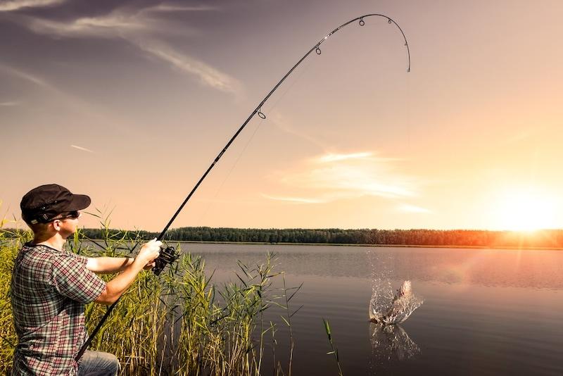投げ竿のおすすめ人気ランキング9選|投げ釣りで快適な釣りライフを
