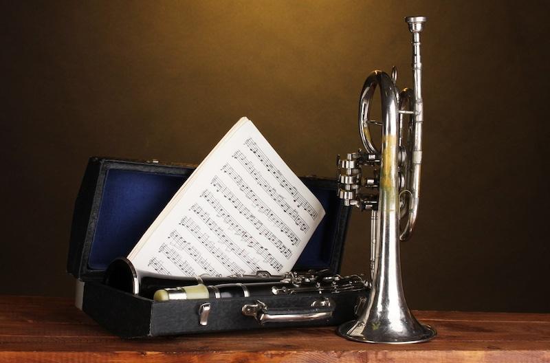 トランペットケースのおすすめ人気ランキング7選 大切な楽器を安全に持ち運ぼう