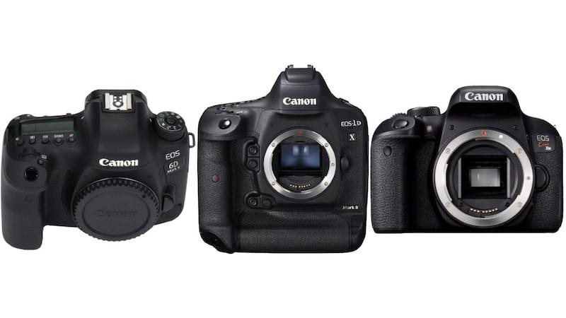【キヤノン】一眼レフカメラのおすすめ人気機種&レンズ22選|プロの写真家が厳選!Kissシリーズなど