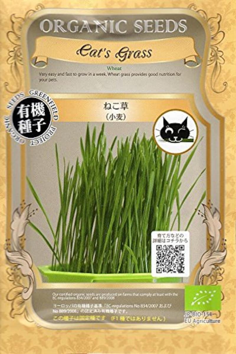 グリーンフィールドプロジェクト,cat's grass