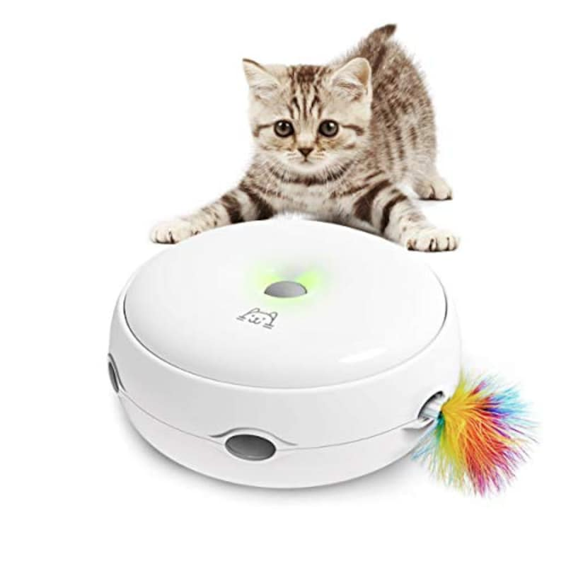 猫の友社,猫じゃらシッター