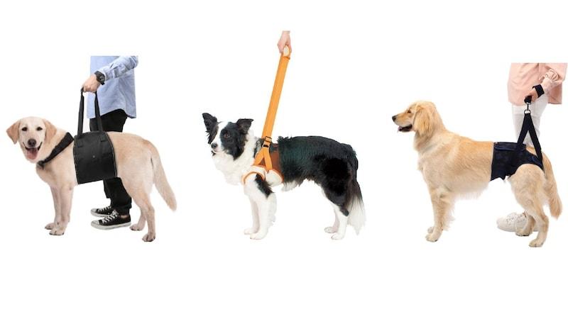 老犬の介護用ハーネスおすすめ15選|小型犬から大型犬まで!後ろ足サポートも