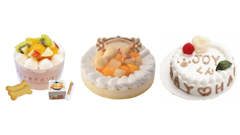 犬用ケーキの人気商品11選|通販で買える!さつまいもを使用した手づくりレシピも紹介