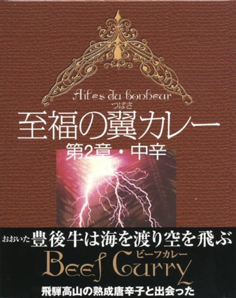 エールアジアコーポレーション,至福の翼カレー 第2章・中辛