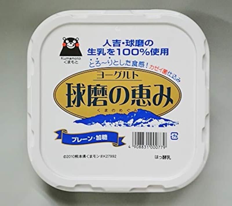 球磨酪農 球磨の恵み(ヨーグルト)