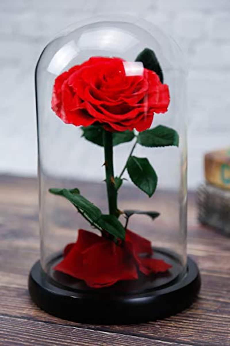 Luckystar,Beauty and The Beast Rose プリザーブドフラワー
