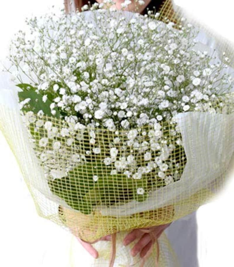 プリティマーメイド,かすみ草 カスミソウ 花束 真っ白な花束 BIG