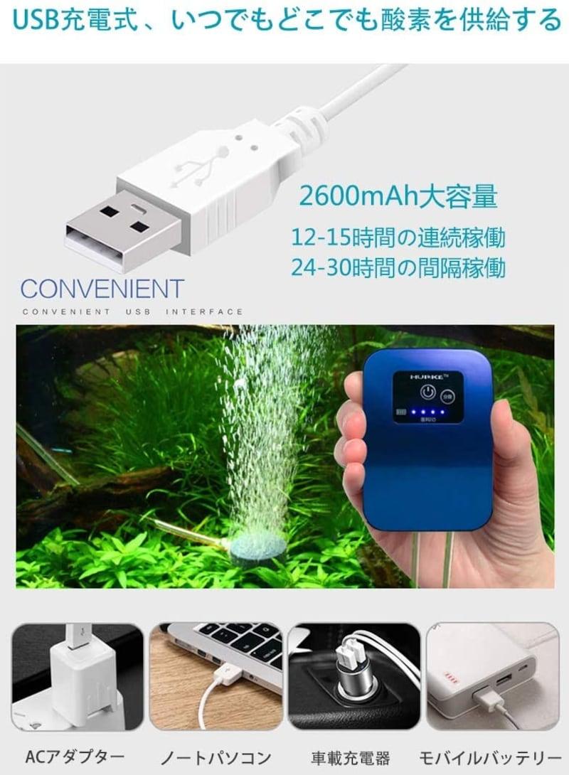 Blueekin,充電式エアーポンプ 日本語説明書付き
