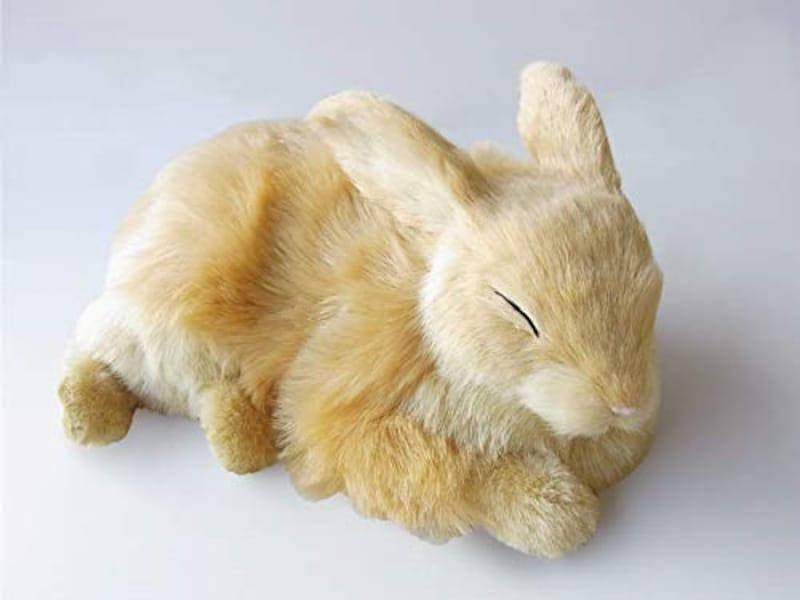 ニニアンドキノ,パーフェクトペット ウサギ ベージュ