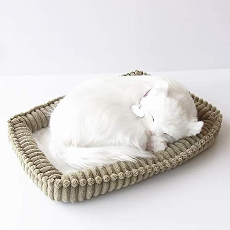 ニニアンドキノ,パーフェクトペット 白猫