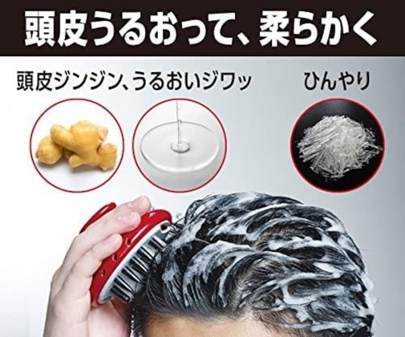 PRO TEC(プロテック),頭皮ストレッチシャンプー