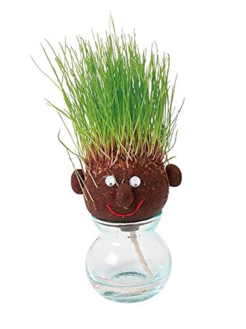 花ごころ,hair Labo 栽培キット 髪の毛,mpg-3068