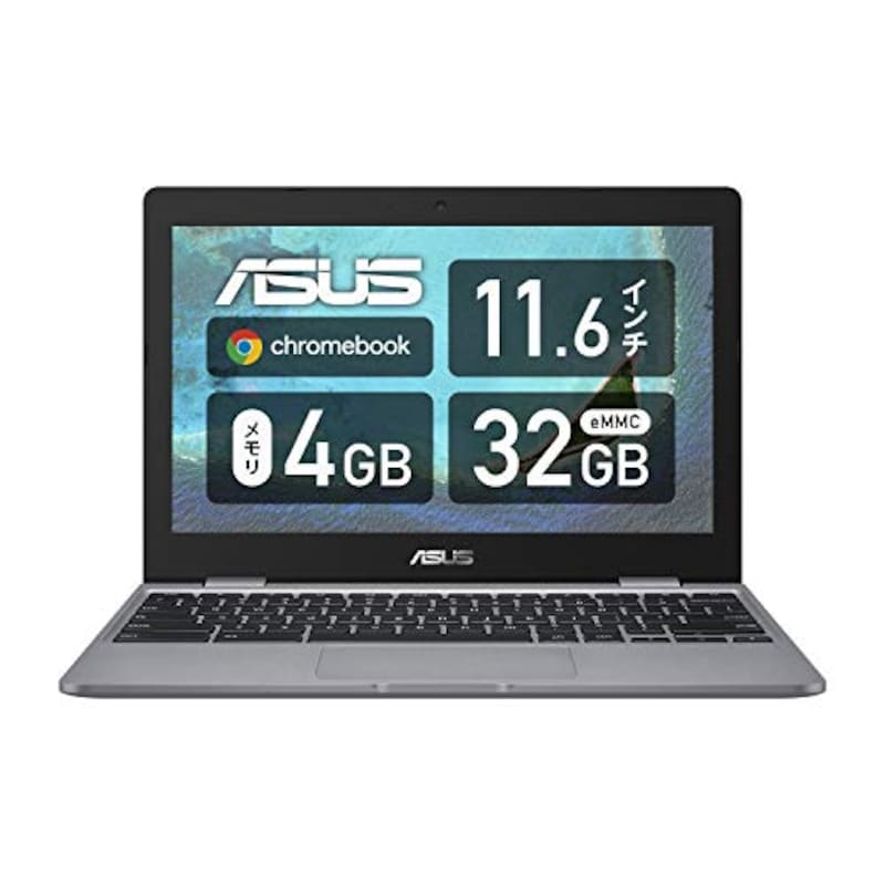 ASUS,Chromebook ASUSTek C223NA,C223NA-GJ0018