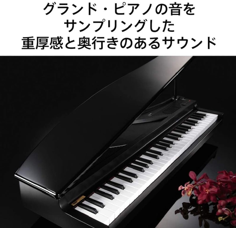 KORG,microPIANO(マイクロピアノ),MICROPIANOBK
