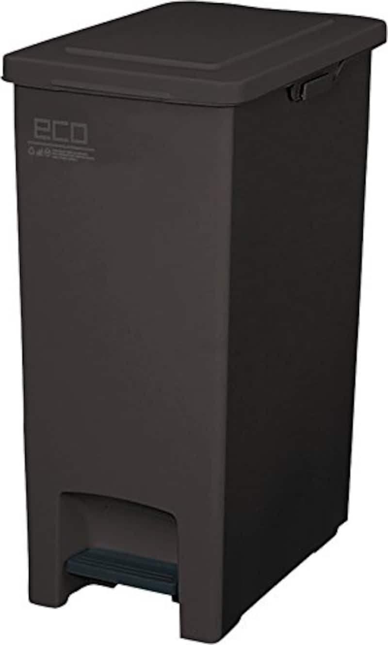 アスベル,エバンペダルペール 45L SD