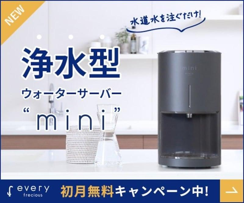 富士山の銘水,every frecious mini(エブリィフレシャス・ミニ),ー