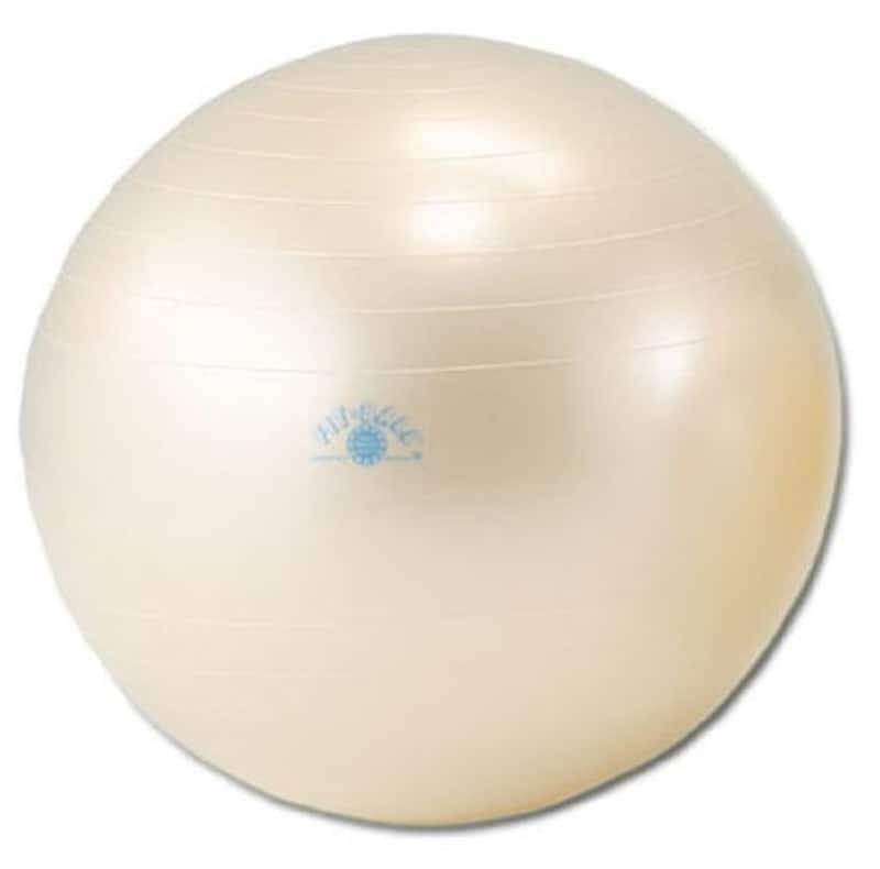 ダンノ(DANNO),バランスボール ギムニクフィットボール
