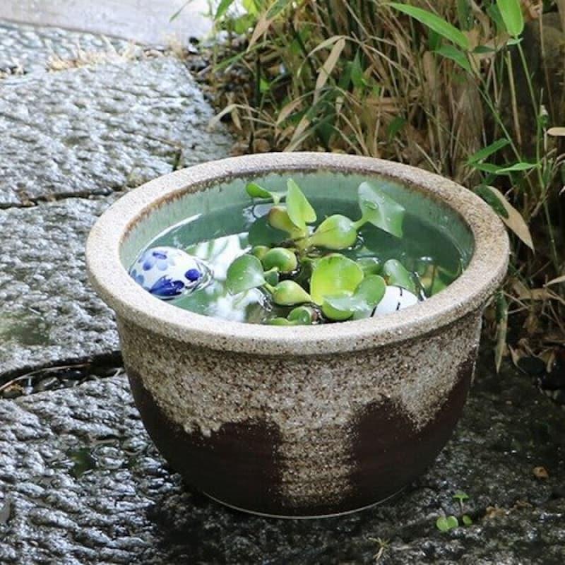 まるいち本店,信楽焼 10号灰釉流し メダカ鉢,su-0194