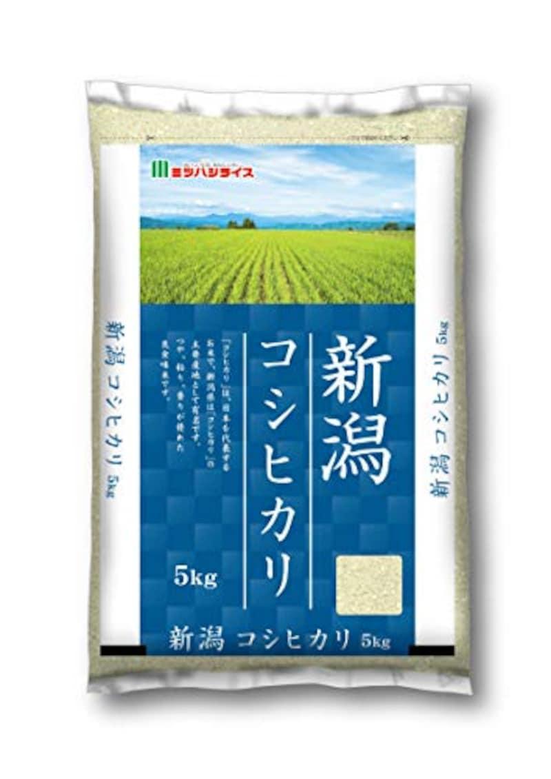 【精米】新潟県産 白米 こしひかり