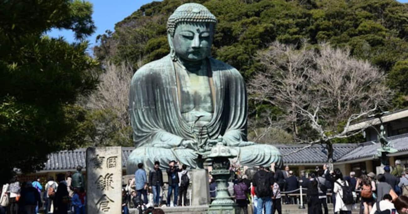 鎌倉「大仏様の健康診断」。心ない拝観者の仕打ちが明らかに…