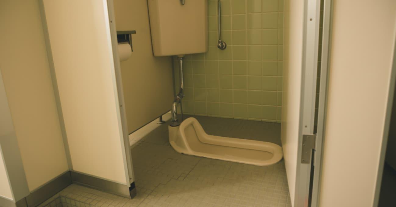 トイレに籠って「う~ん」と考えた…和式便器が消えない理由ってなんだろう?