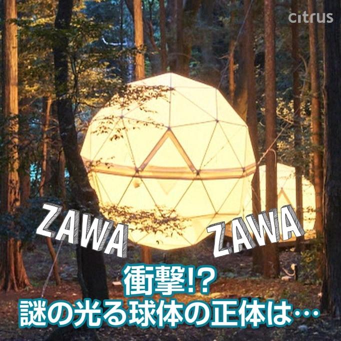 いま注目のレジャー施設…? 自然公園に登場した「幻想的な球体」の正体とは──ZAWA-ZAWAしているあのスポットへ!