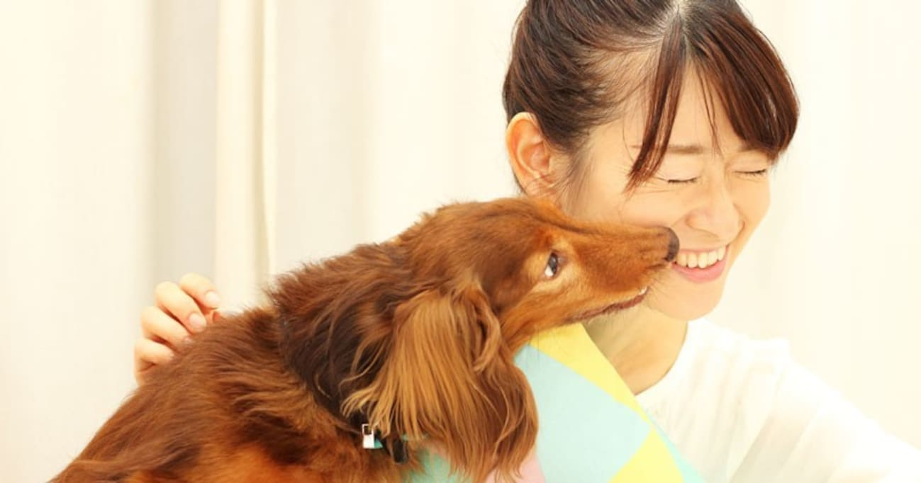 約8割の犬が泣いている人をなぐさめた! 最新研究から見えてきた驚くべき能力とホンネ