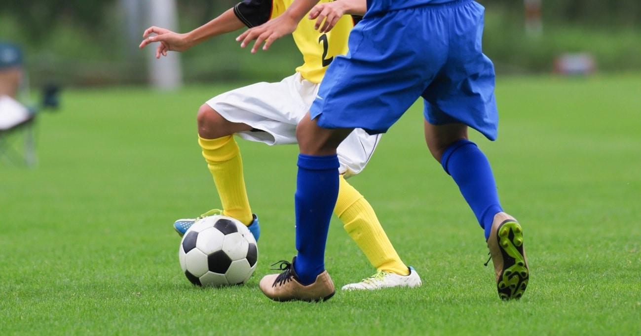 年間2000試合観戦するサッカーから人生を学ぶ!小柳ルミ子のサッカー論とは?