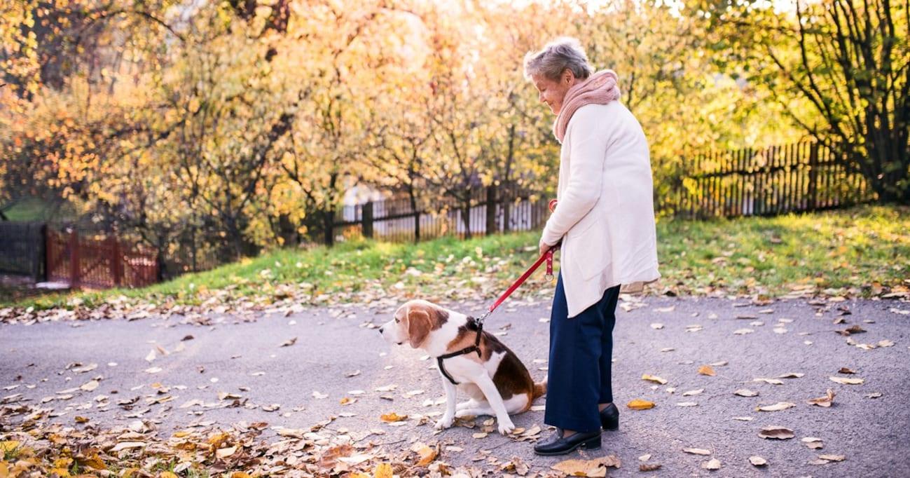 【SNSで話題】飼うべきじゃない⁉「高齢者の動物飼育」につきまとう根深い問題に専門家は…