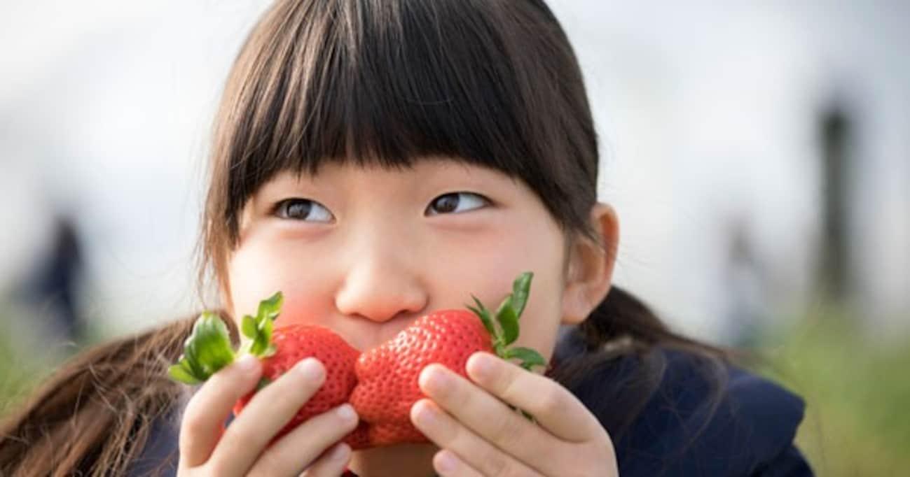 """常識がぶっ壊される…私たちが食べていたイチゴの赤い部分は""""実""""ではなかった件!"""