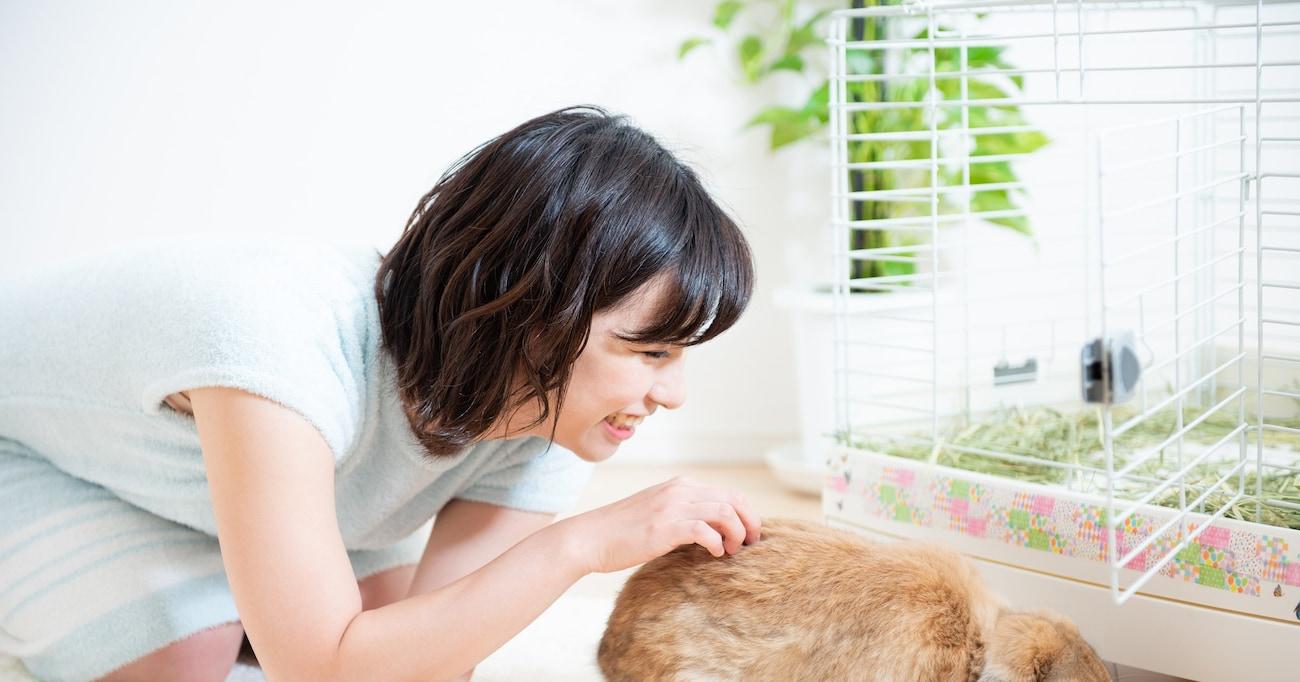 """【癒し】まるで毛を逆立てる猫のよう…あくびをしている""""ウサギちゃん""""の姿が「可愛すぎる」「ポケモンぽい」と話題に"""