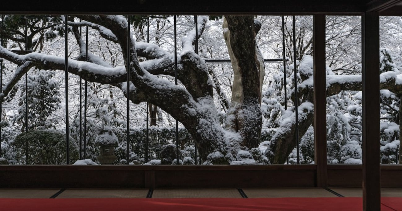 銀世界を背景にした『京都宝泉院』の雪景色が素晴らしいと話題に…「心が引き締まるよう」「言葉が見つからない」