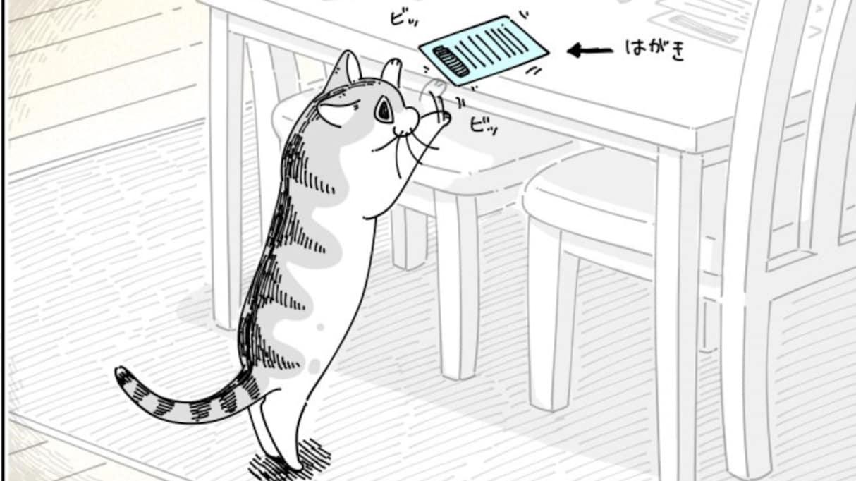 """【謎】机の上のハガキをビッビッする猫。何をしているんだろうと思って見ていると… """"驚きの事実"""" を知ってしまう"""