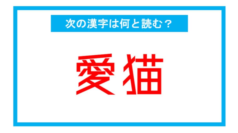 【漢検2級レベル】「愛猫」←この漢字、何と読む?(第123問)