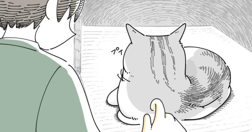 ふさふさな猫の後頭部を見るとどうしても…ついやりがちな″ある行動″に共感の声