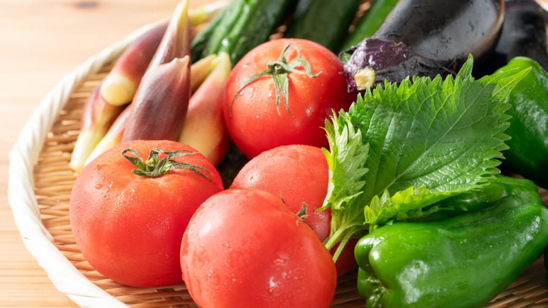「野菜が高くて買えない」というのは間違い?農家が直面している現状に嘆きの声