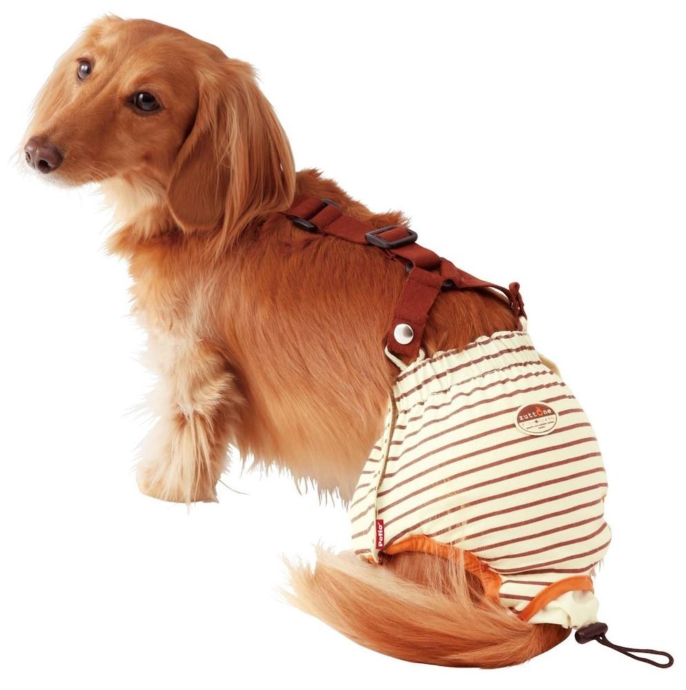 zuttone 老犬介護用 おむつパンツ