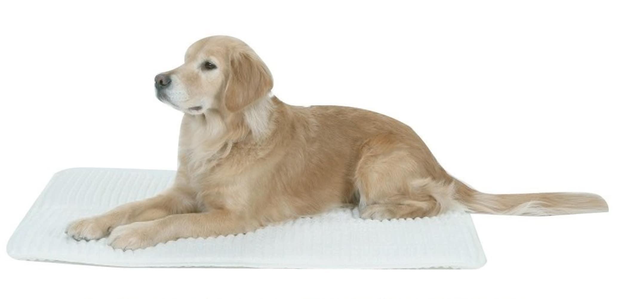 床ずれ防止マット