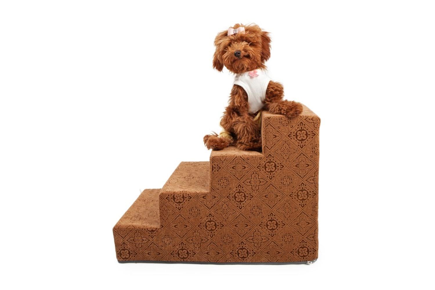 階段型のスロープをのぼる犬