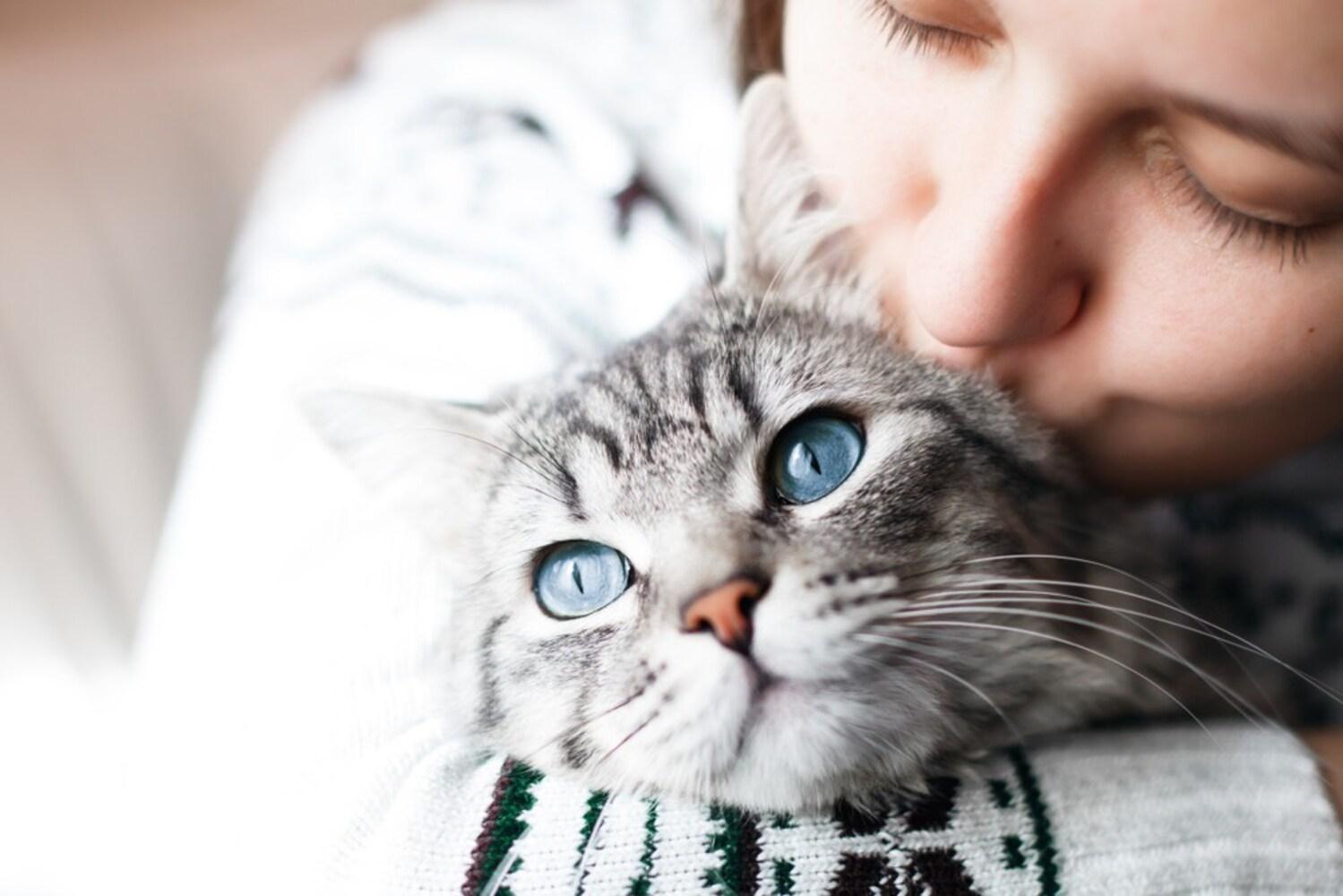 猫ちゃんと飼い主の女性